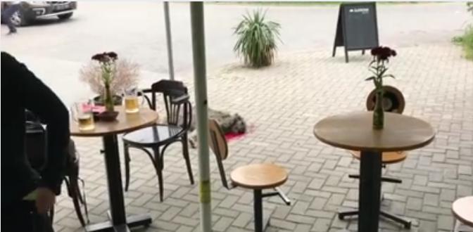 ВОЗНЕМИРУВАЧКО  Ладнокрвно  со секира убиено куче во Скопје