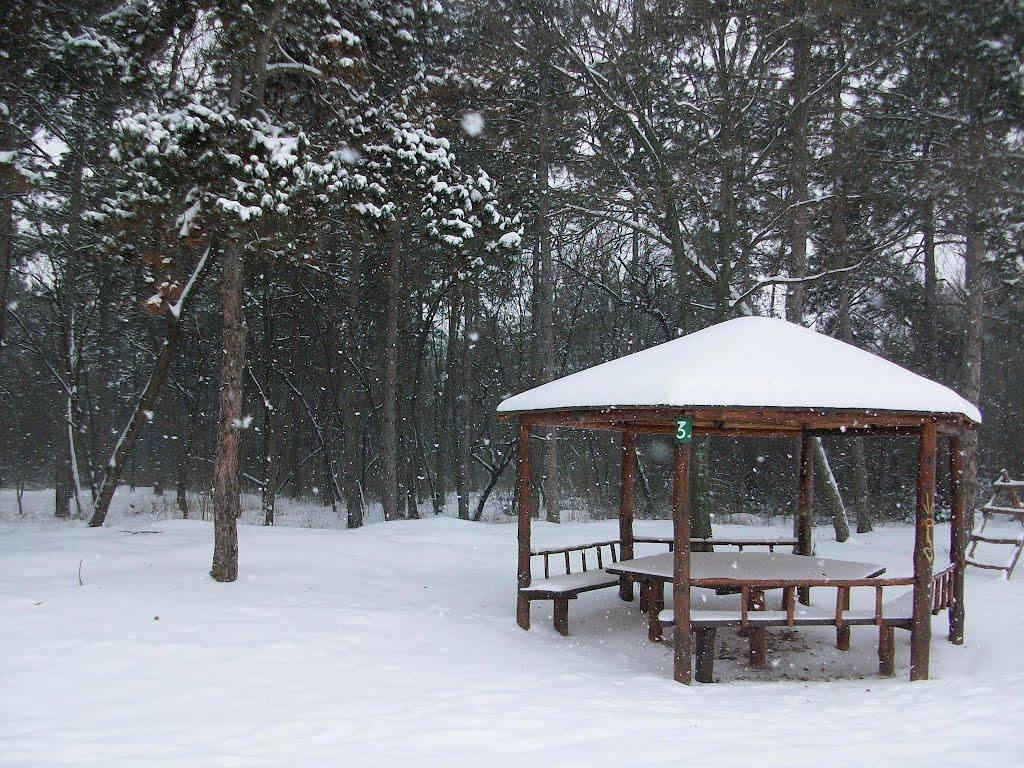 Снежна шума среде Скопје