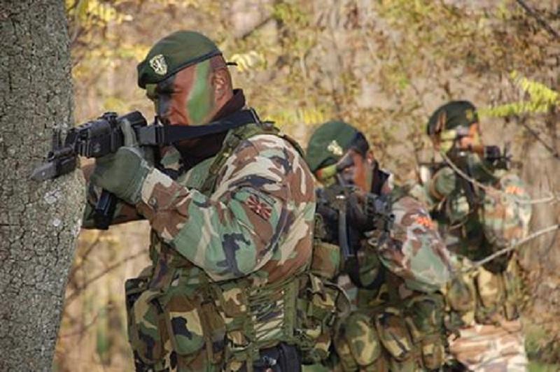 Почина професионален војник на АРМ  по гаснење пожар на Криволак